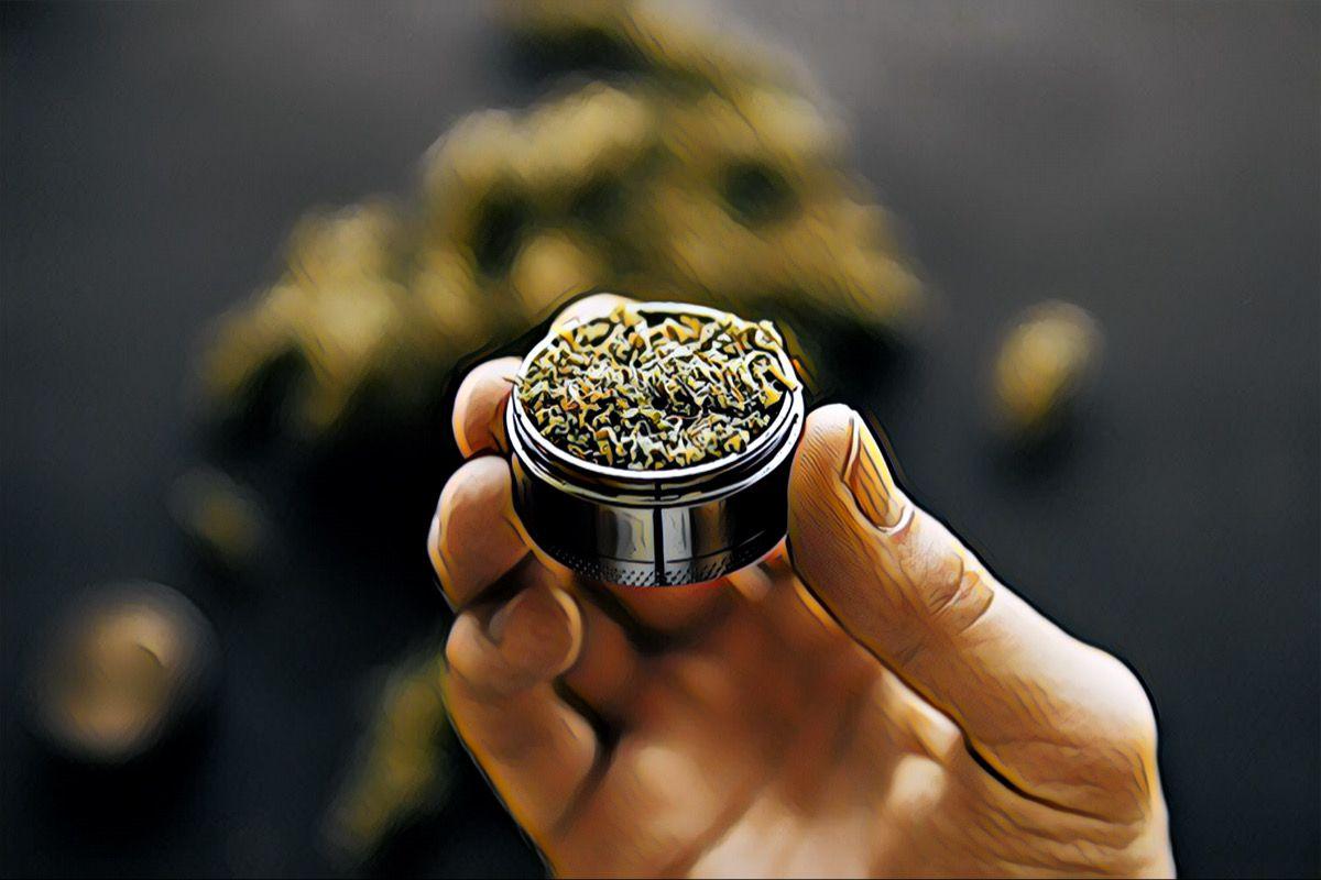 NY Marijuana Card