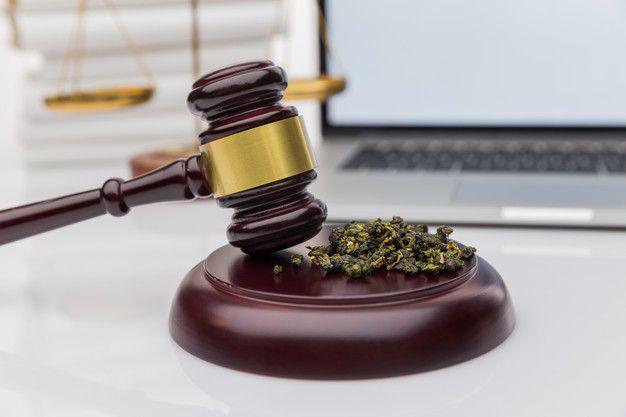 medical marijuana Albany