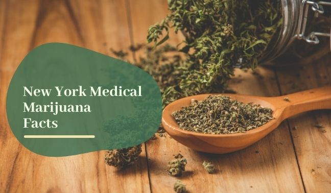 New York Medical Marijuana FActs